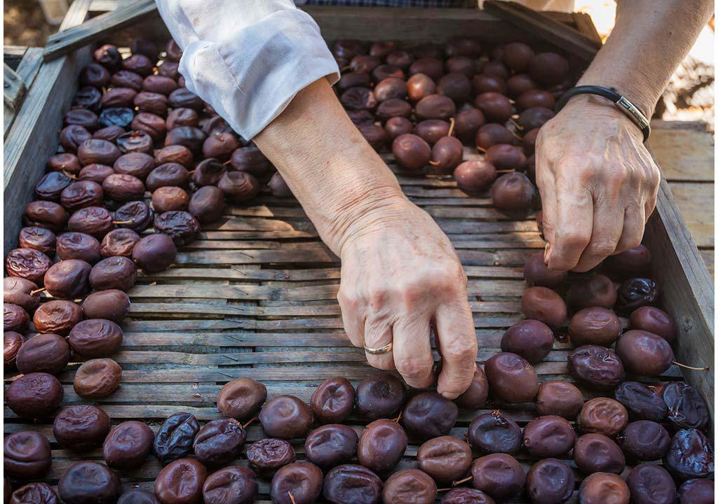 Prunia-plum-liqueur-production